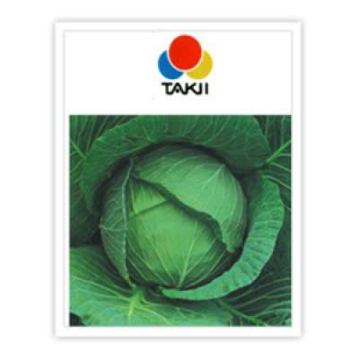 Takki: Green Cornet