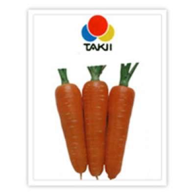 Takki: New Kuroda