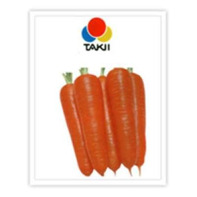 Takii: Terracotta (F1 Carrot)