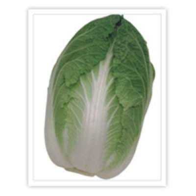 Takii: Cabbage Hero