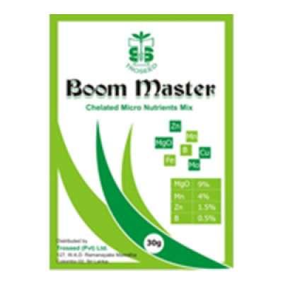 Boom Master